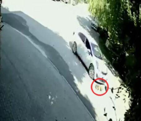 otomobille ezilen fındık, güvenlik kamera görüntüleri