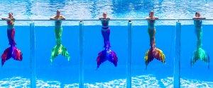 Deniz kızı şovu Dolusu Parkı