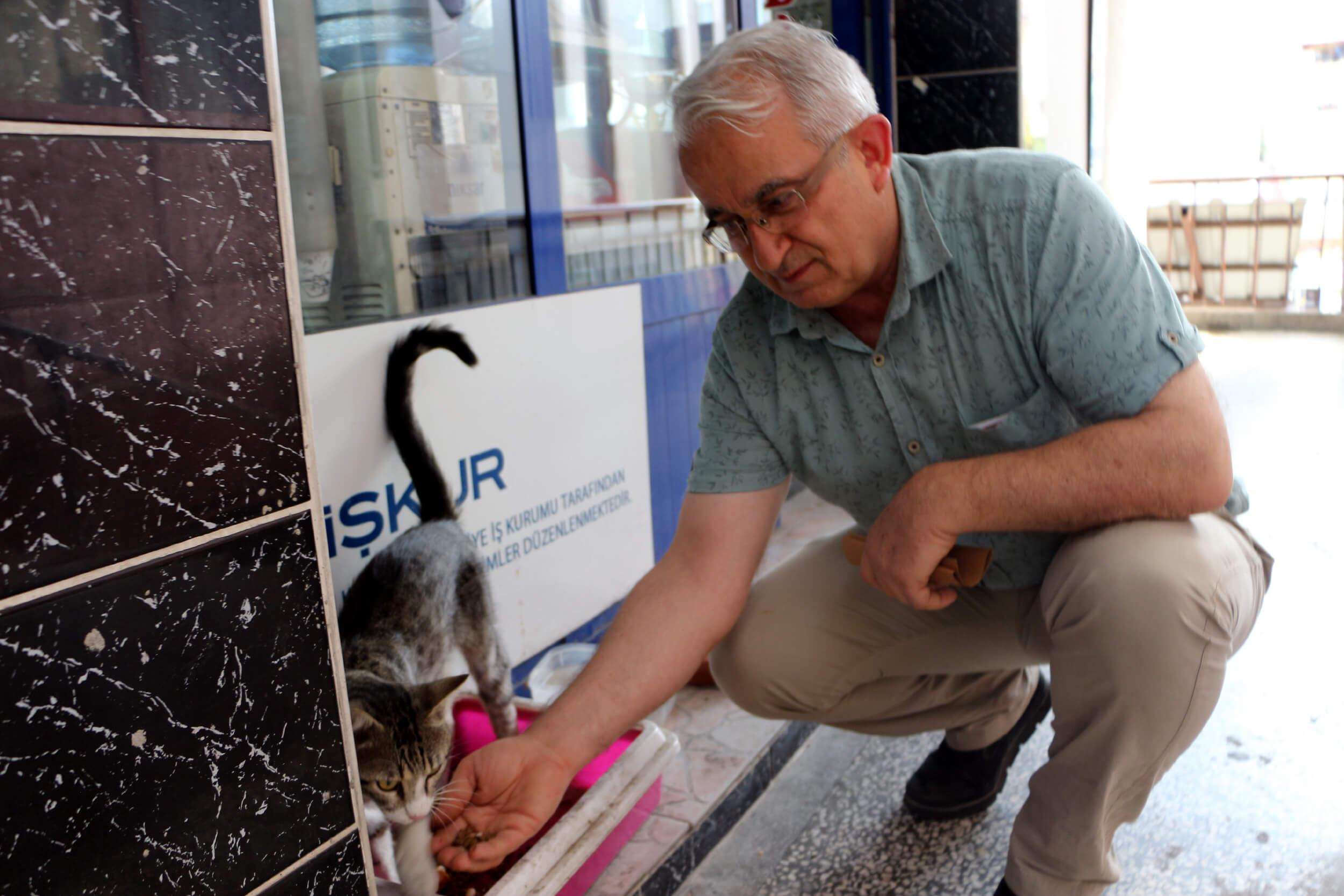 Cemalettin Bilgin, sahibi olduğu yerel gazete önünde sokak hayvanlarını besliyor.