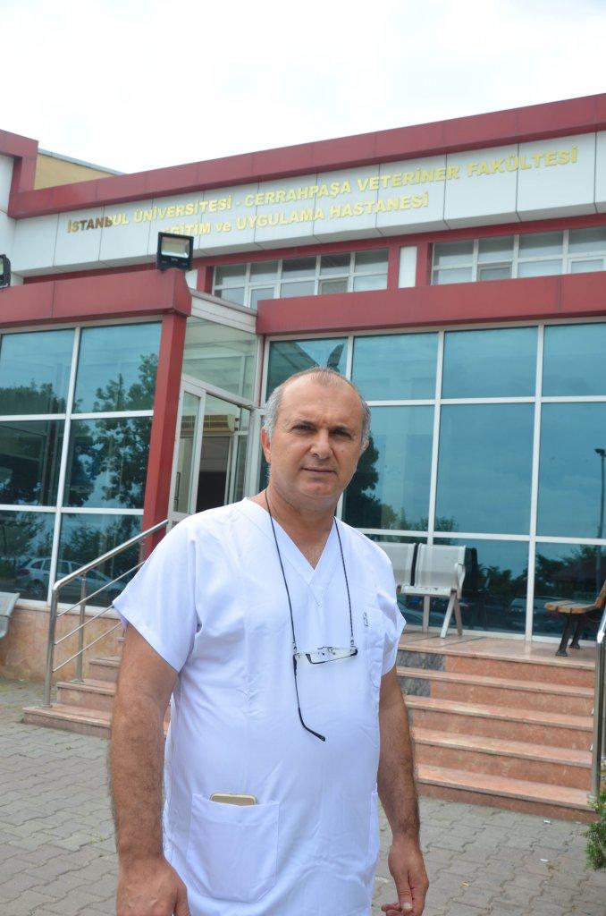Prof. Dr. Oktay Düzgün, günde 100-120 hasta hayvana bakıldığını belirtti.