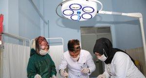 Iğdır'da yaralı bulunan kedi ameliyata alındı