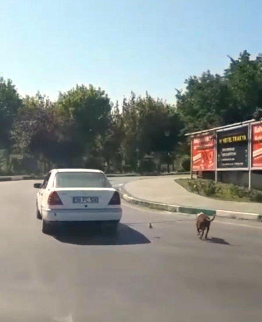 aracının arkasına bağlayarak köpeğini gezdiren sürücüye büyük tepki