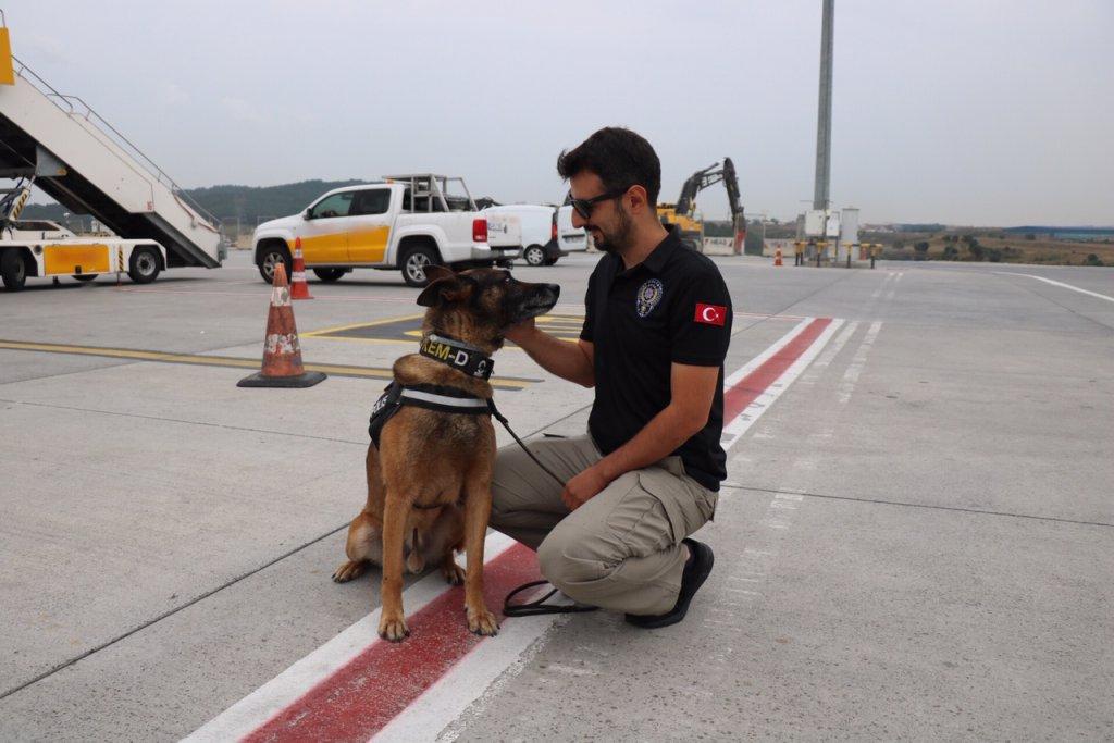 Narkotik köpekleri hava alanında şark görevine gidiyor
