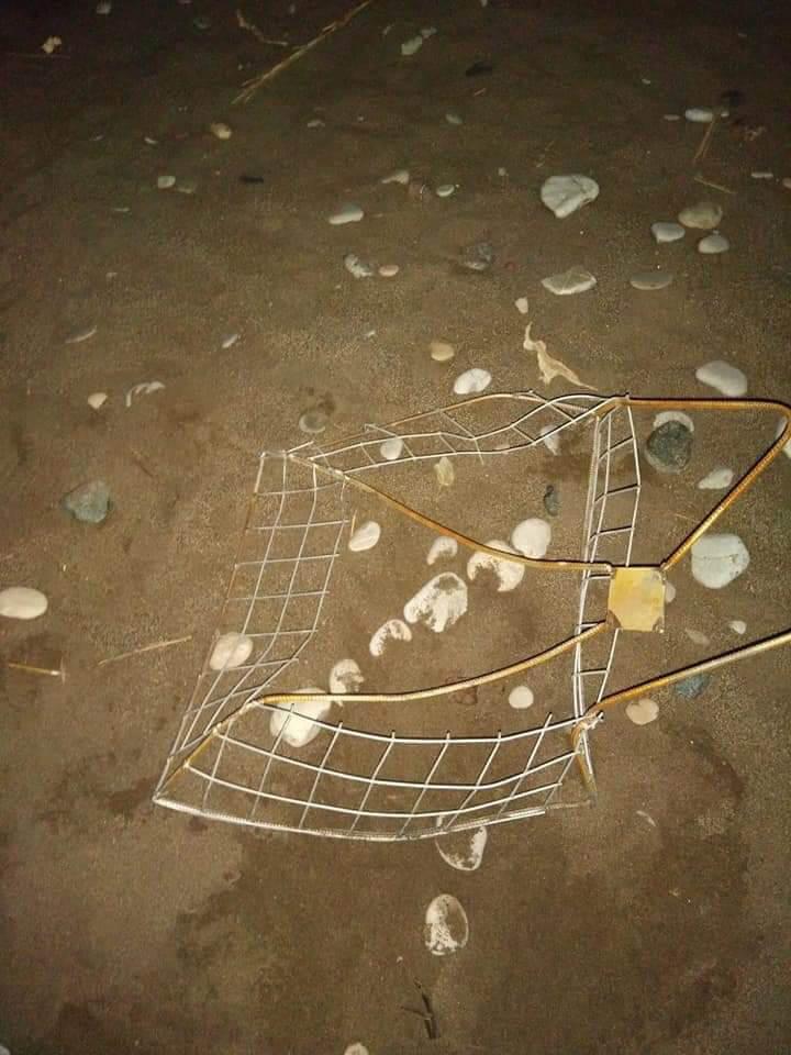 Sahilde drift yapan araç caretta caretta yuvalarına zarar verdi