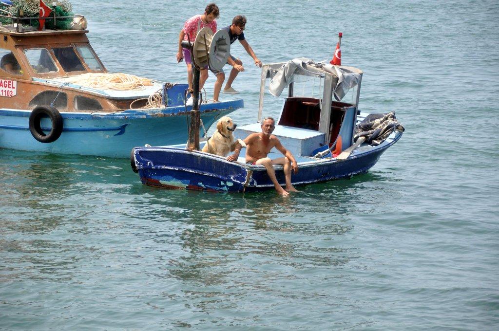 sudan jet skili görevliler tarafından alınan köpek balıkçı teknesi aracılığıyla karaya çıkarıldı.