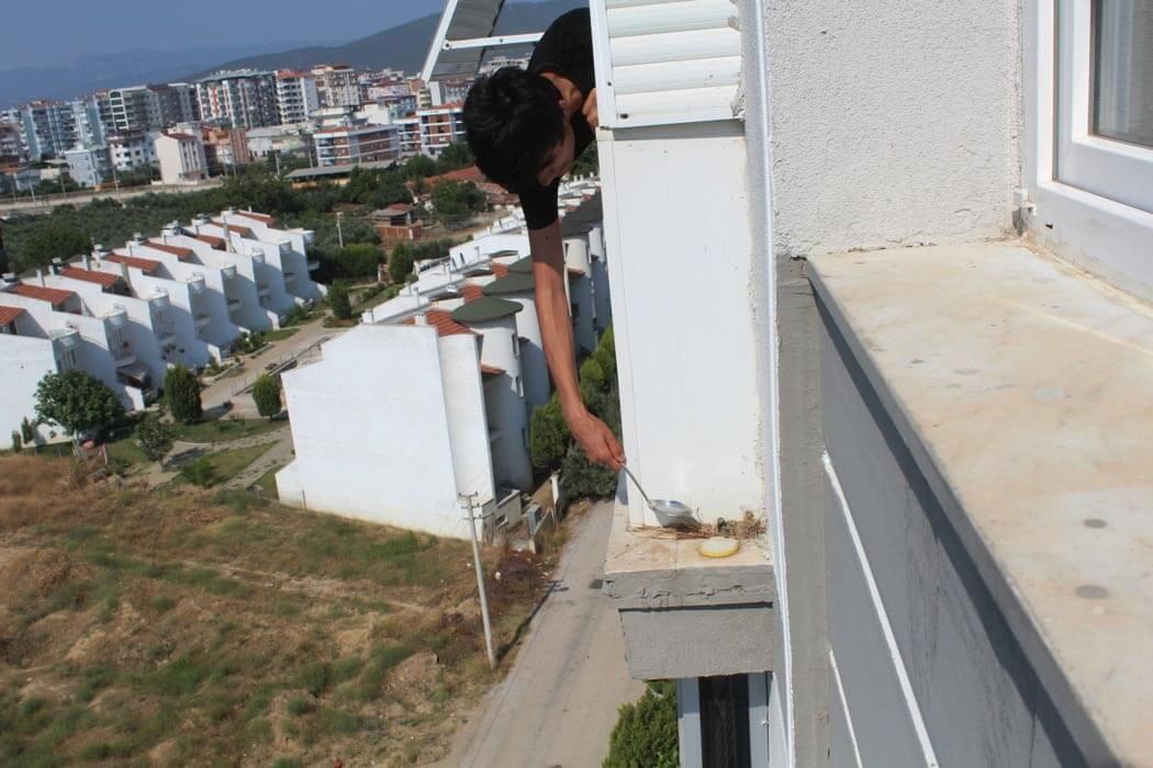 Balkonun dış cephesindeki kuş yuvasına uzanan Emre Topal'în resmi