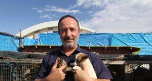 Bayburt Sokak Hayvanları Rehabilitasyon Merkezi'nde kucağına yavru kedi ve köpek almış birisinin resmi