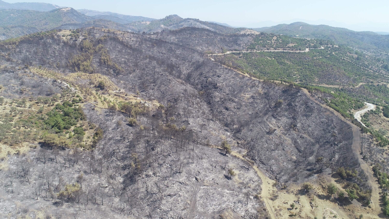 İzmir'de ki yangın sonrası bölgenin kuş bakışı resmi
