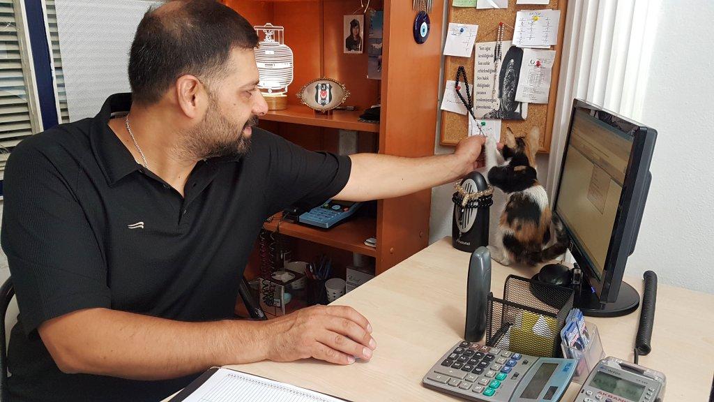 İş yerinin sahibi Ali Eytemiş, pazar günleride sadece kedilere beslemek için iş yerini açıyor.