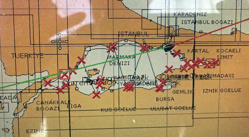 Marmara Denizi'nde sayımı yapılan yunuslar için hazırlanan veri örneği