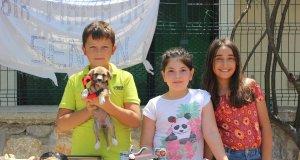 Çocuklar baktıkları sokak köpeğinin tedavisi kurdukları stantta için satış yaptı