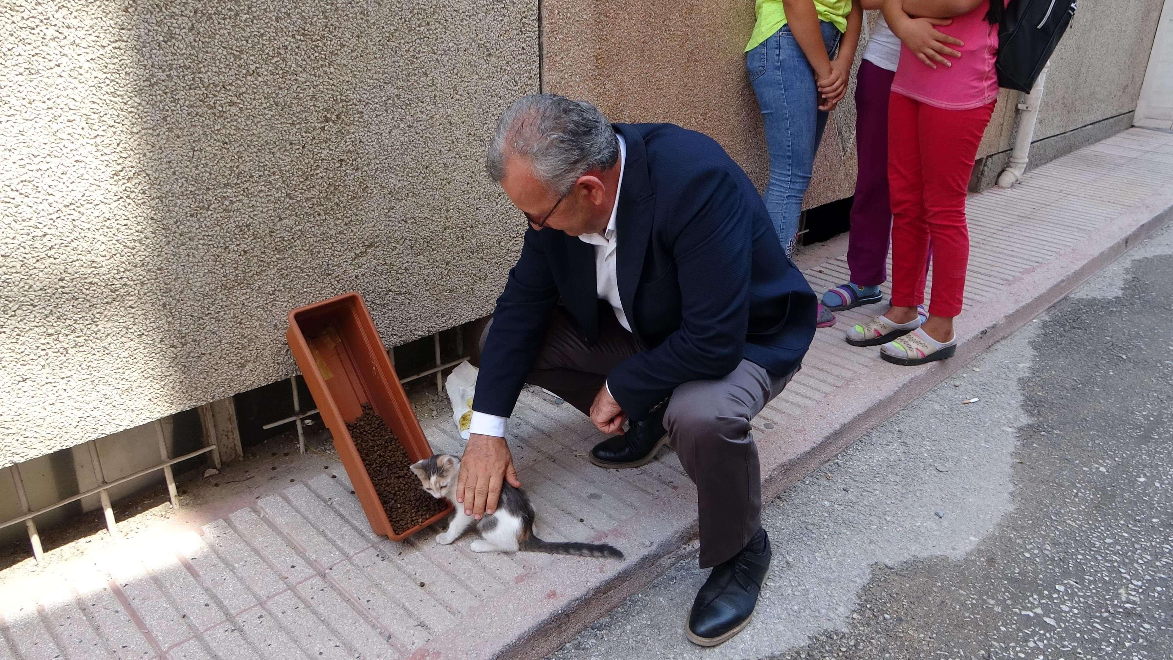 Keşan Belediye Başkanı Mustafa Helvacıoğlu sokak hayvanları için mama verdi yavru kedileri sevdi