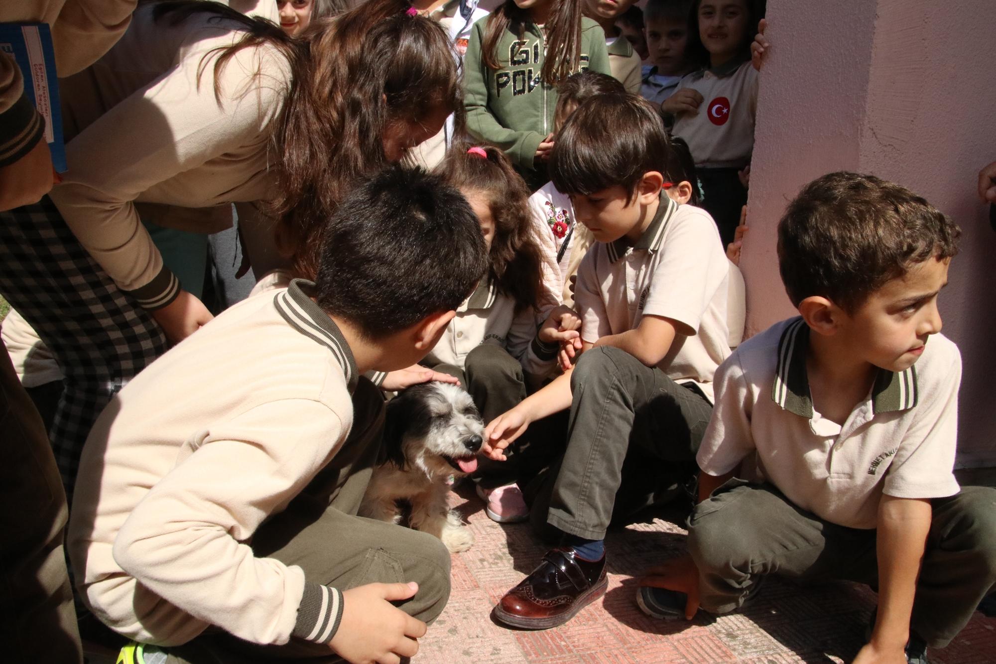 öğrenciler köpeğe tüylü adını verdi