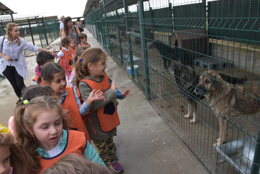 Öğrenciler barınaktaki hayvanları sevme ve besleme imkanı buldu