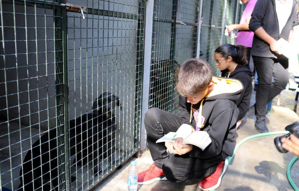 Marmaris'te sokak hayvanları için kitap okudular
