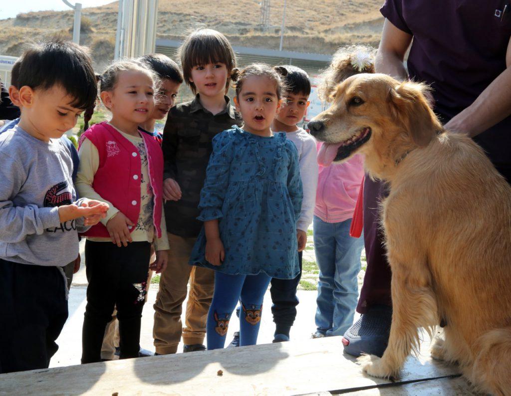 minik öğrenciler sahipsiz hayvanları ziyarete gitti